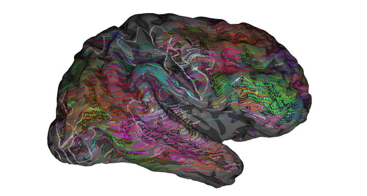 brain research meaning mapped language mapping