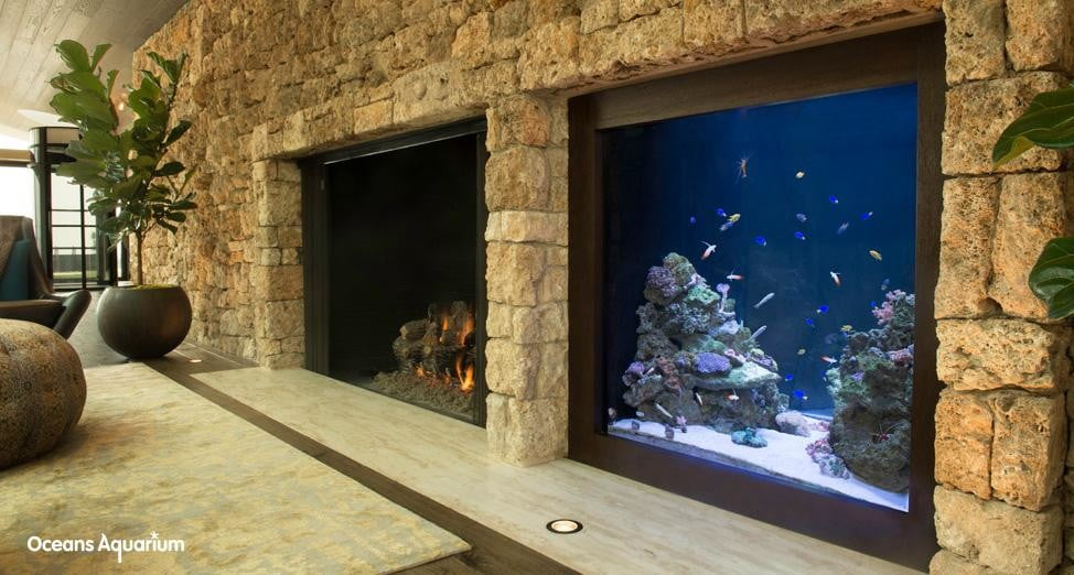 homes with their own shark tanks 13