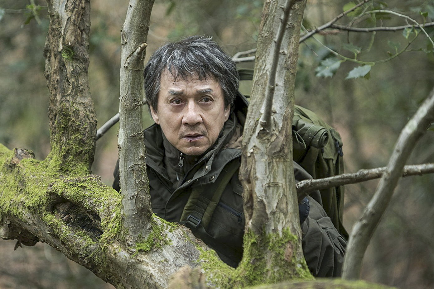 highest paid actors 14950 jackie chan  the foreigner 2017