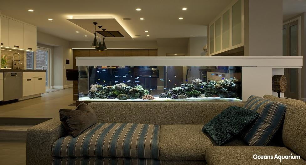 homes with their own shark tanks 2