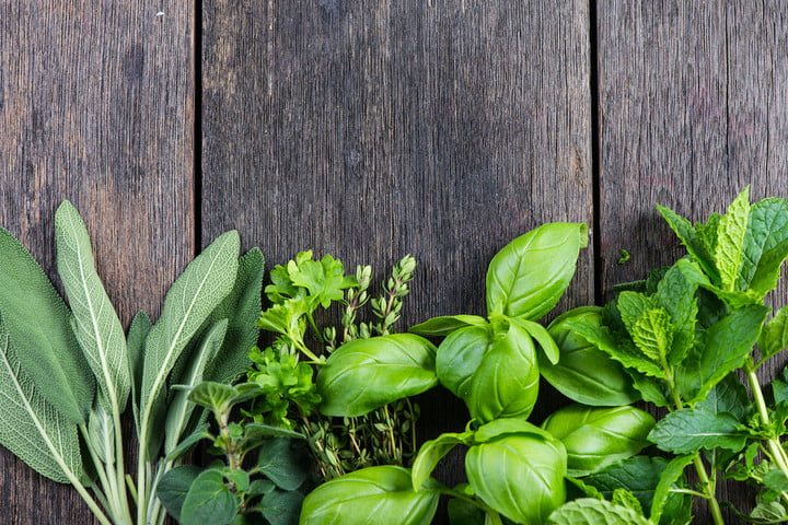 how to grow herbs indoors 40545079  fresh from garden on wooden rustic background