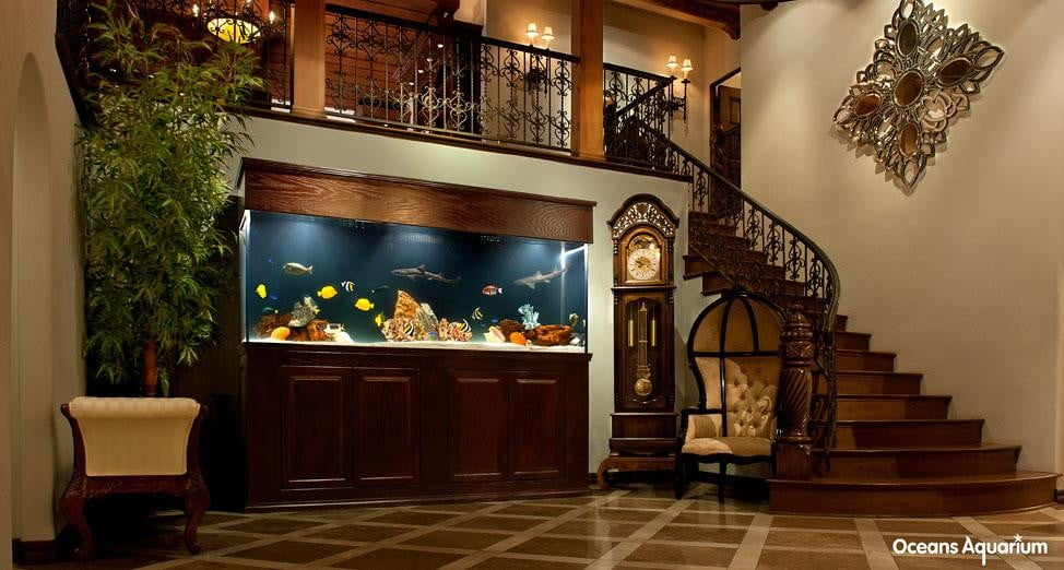 homes with their own shark tanks 5