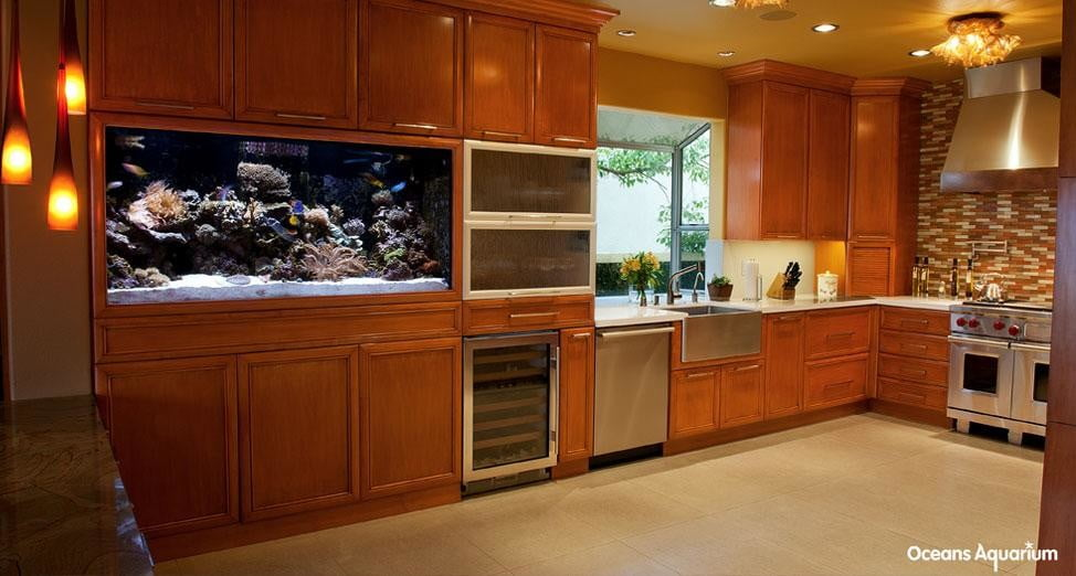 homes with their own shark tanks 7