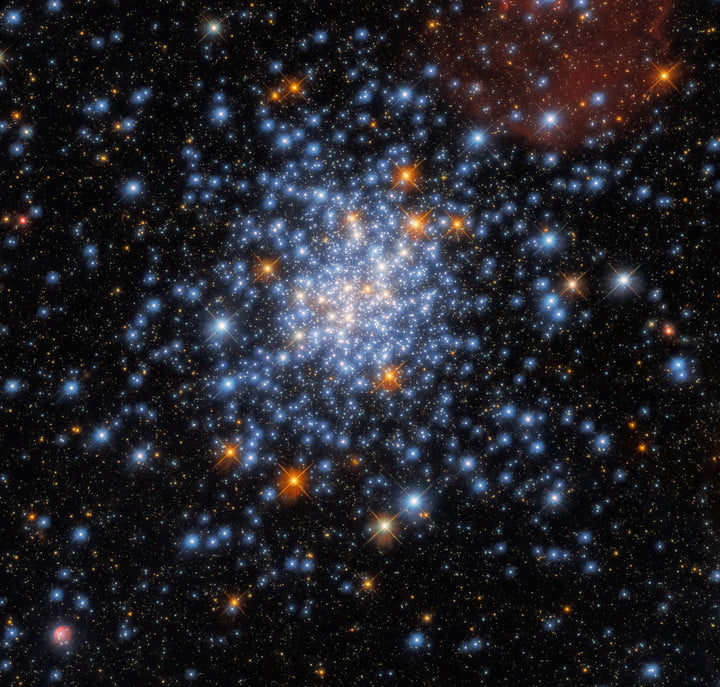 Hubble captures a star cluster in hues of red, white, and blue