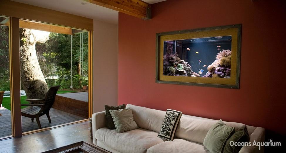 homes with their own shark tanks ag4