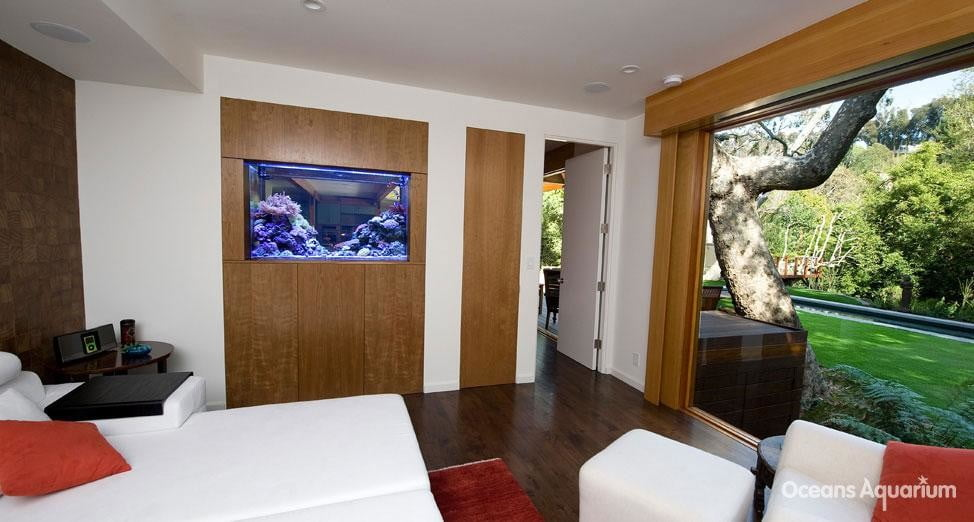 homes with their own shark tanks ag5