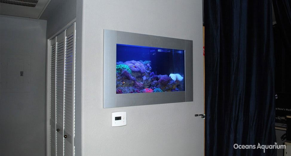 homes with their own shark tanks ag9