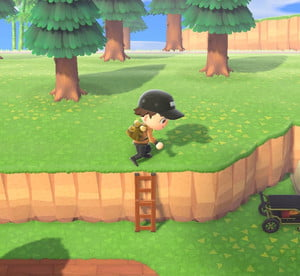 animal crossing new horizons how to get ladder