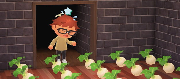 how to play the stalk market in animal crossing new horizons turnip guide featured