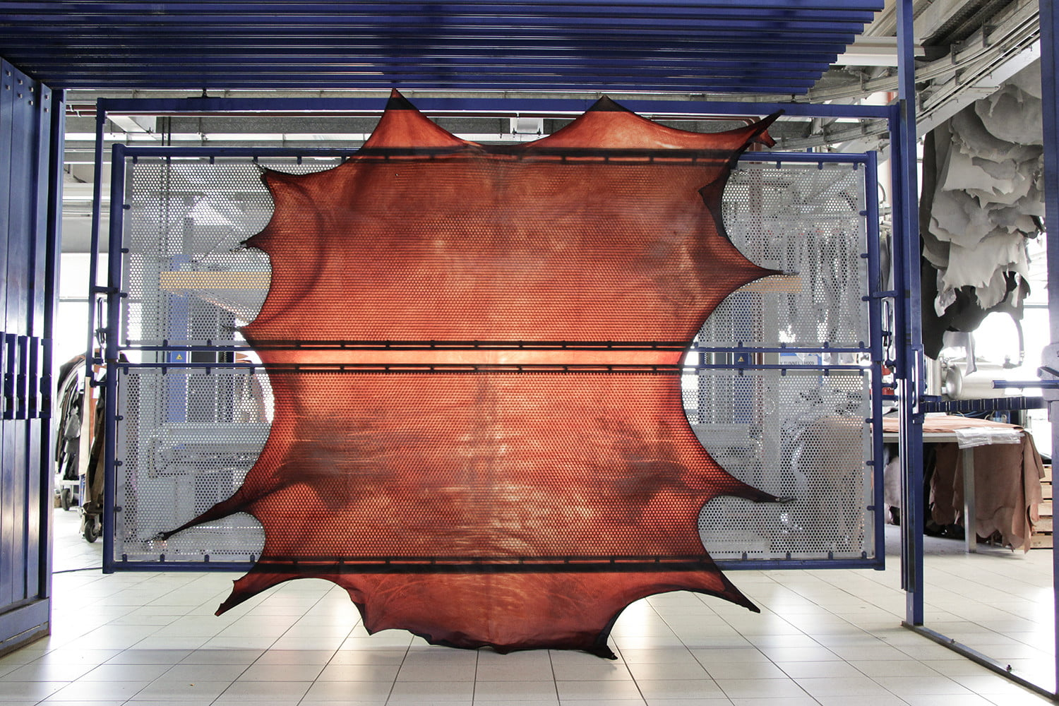 colorful transparent leather cowskin ecco apparition  tannery amber