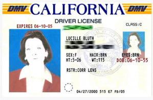 arrested-development-lucille-bluth-drivers-license