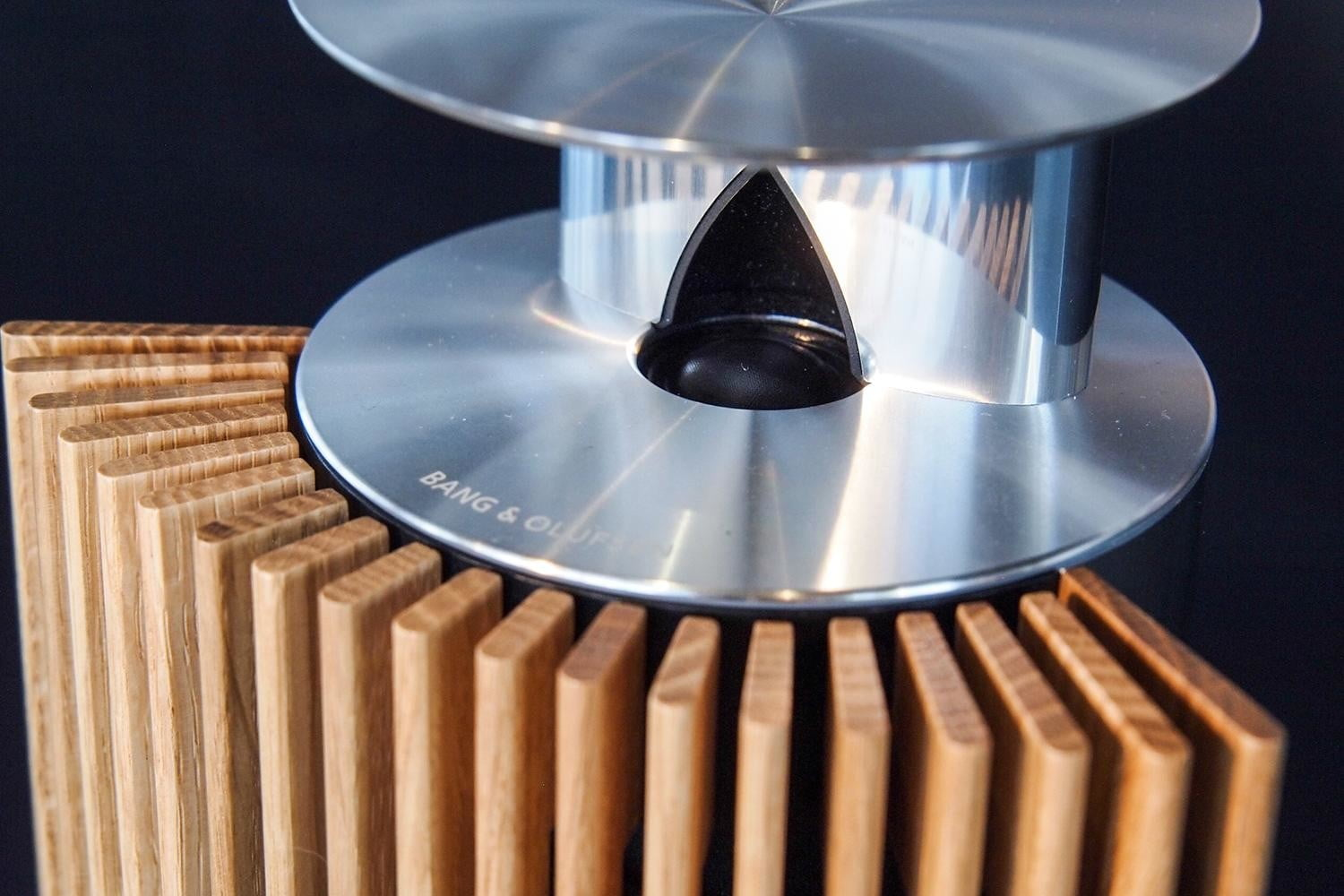 Bang Olufsen BeoLab 18 grill