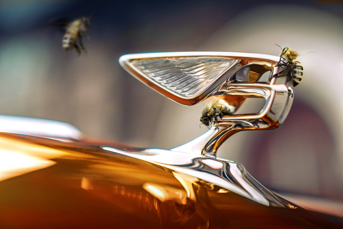 bentley motors creates a buzz as it enters the honey business bees 1