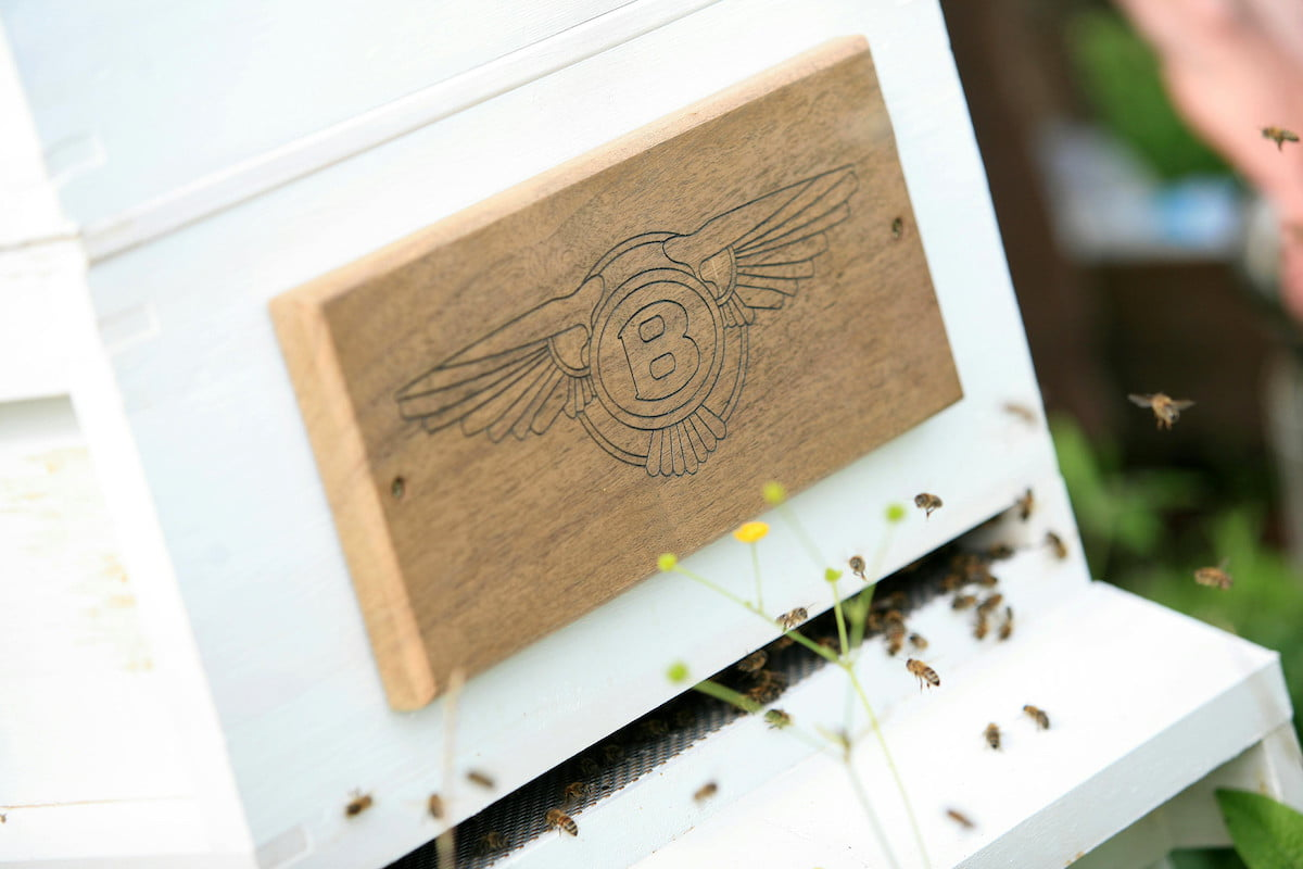 bentley motors creates a buzz as it enters the honey business bees 4