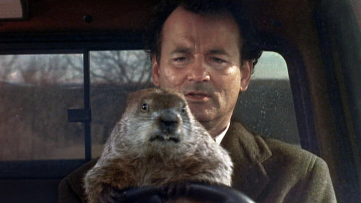 Bill Murray in the driver's seat of a car with a groundhog on the wheel.