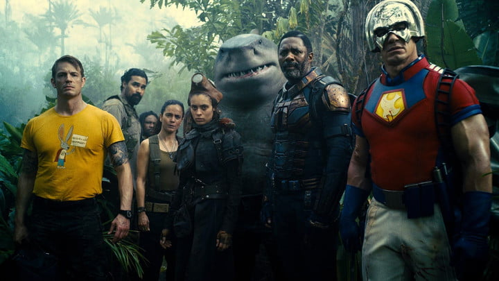 The heroes of The Suicide Squad.