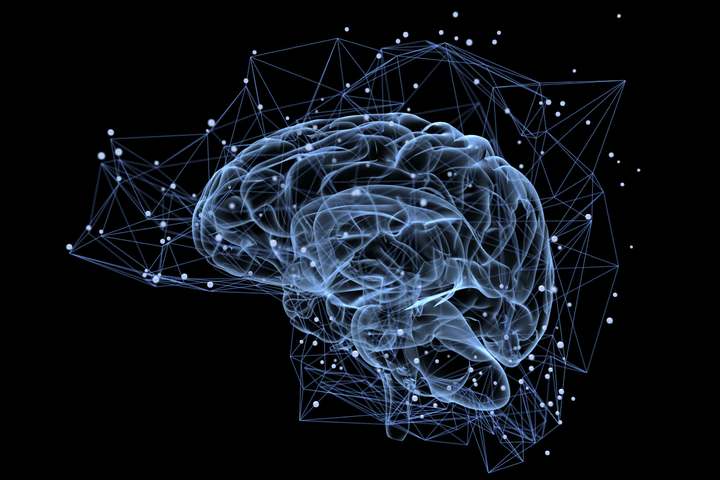 what is the mandela effect brain stock photo