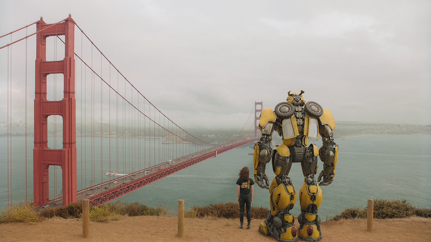 bumblebee review 21