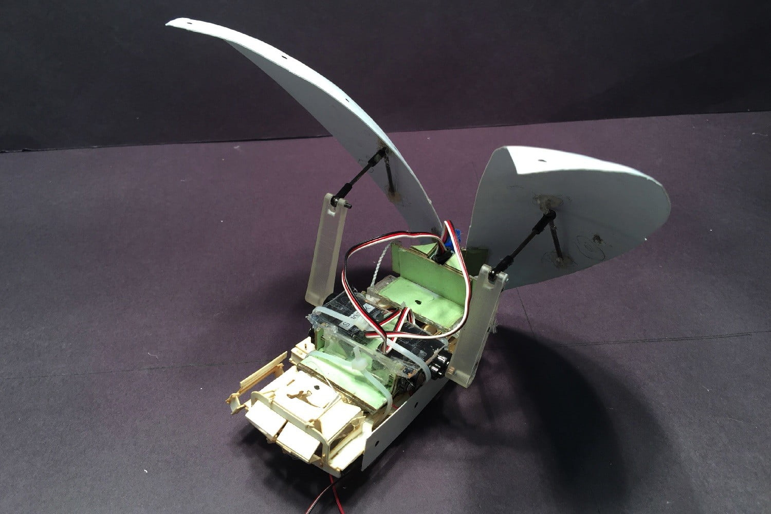 cockroach robot flaps its wings cockroach1