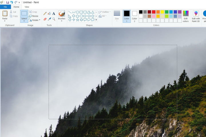 An image opened for editing in Microsoft Paint.