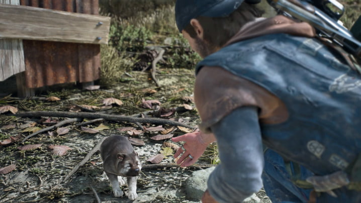 Days Gone Trust Guide