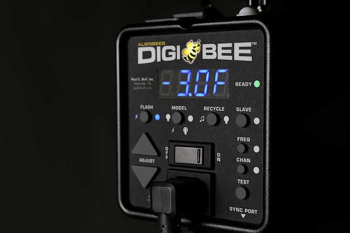 digibees introduced digibee
