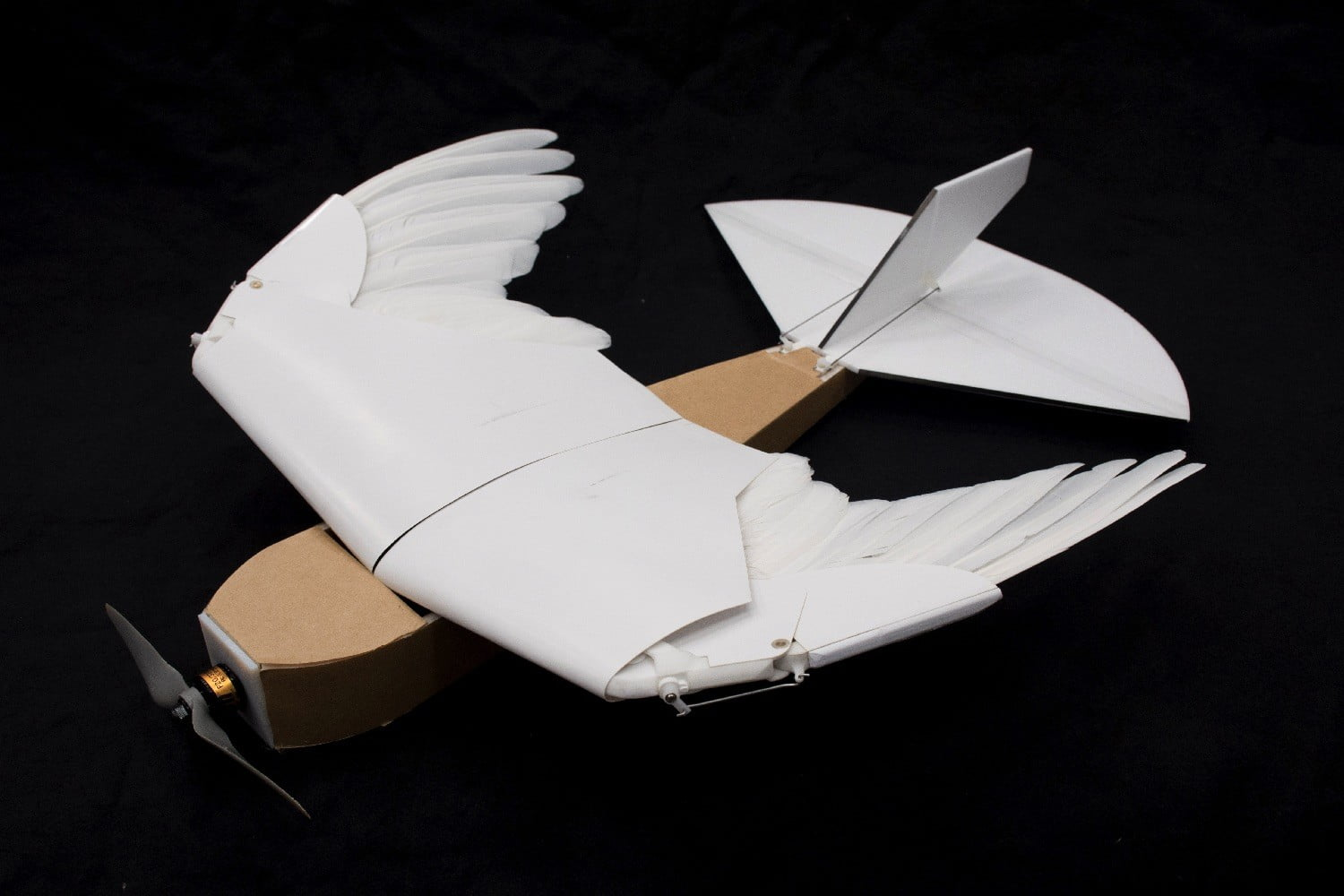 pigeon bot feather drone takes flight dl0 7394