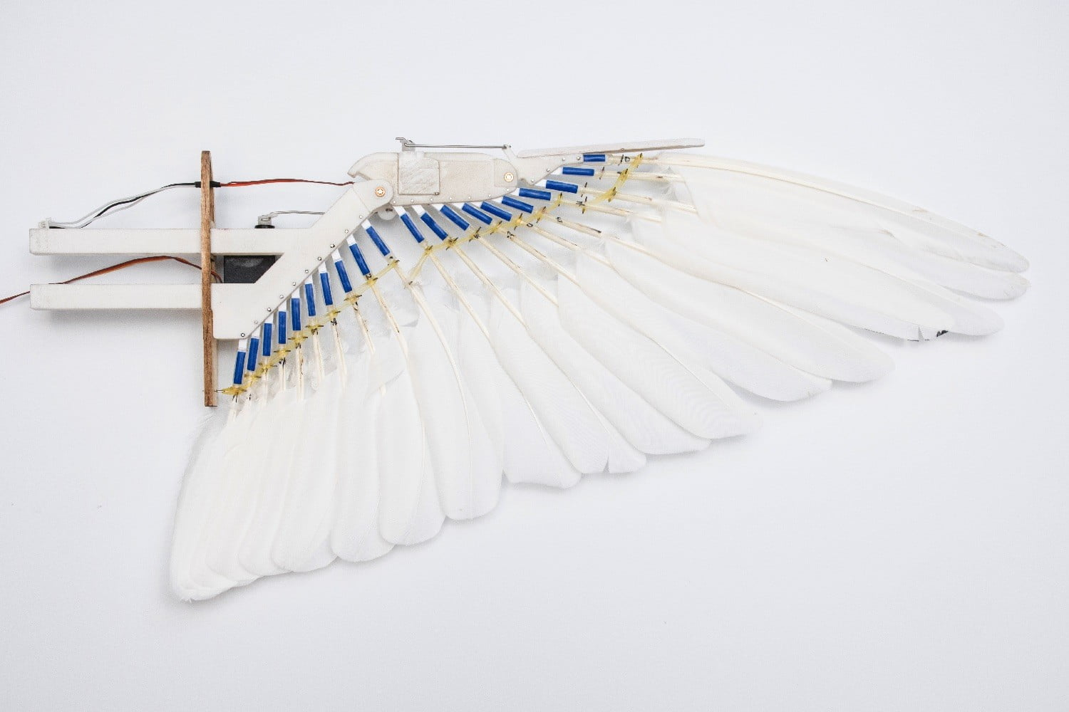 pigeon bot feather drone takes flight dl0 8209 3