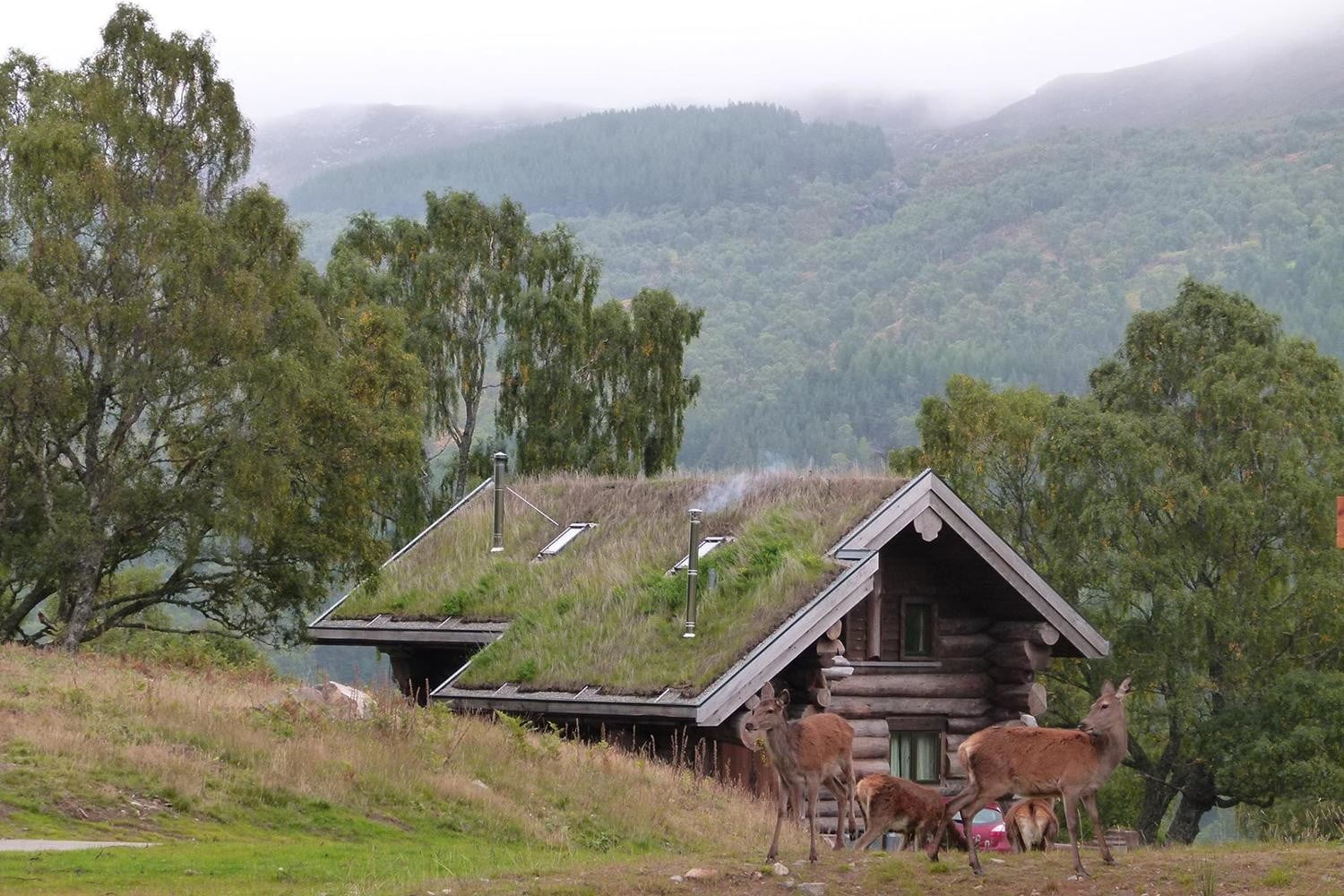retreat from society and relax in these idyllic cabins around the world eagle brae highland log 14