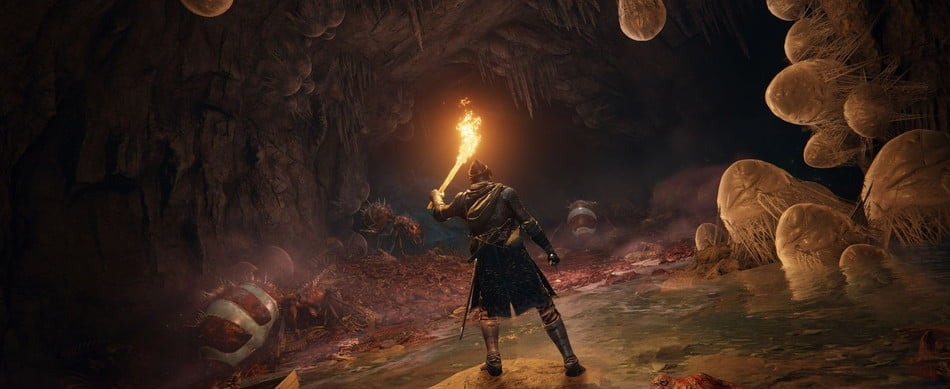 Elden Ring's hero shines a torch in a fleshy cave.