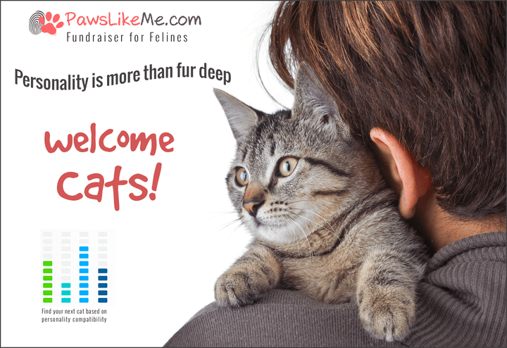 pawslikeme connects dogs owners felines crowdfund3 plm