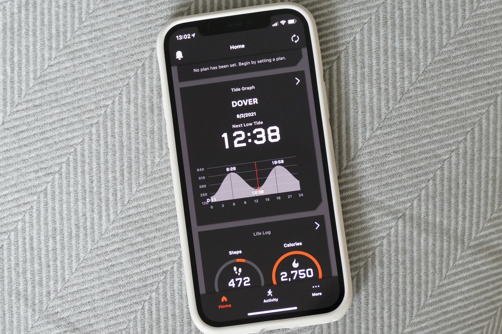 The tide graph on the G Shock Move app.