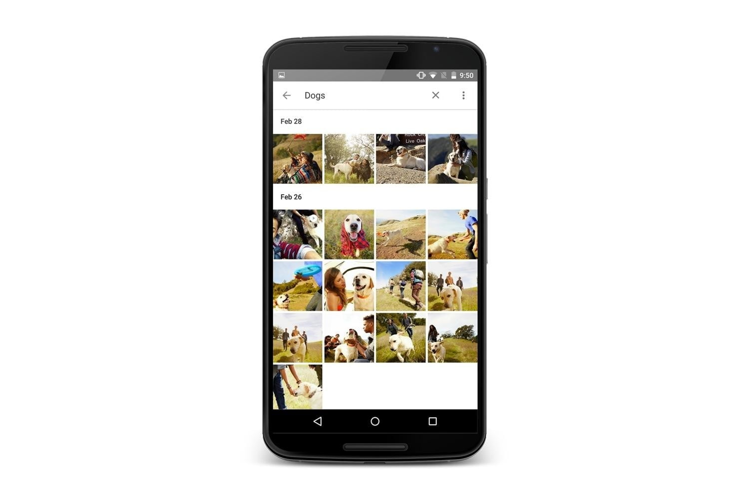 google photos app news moments