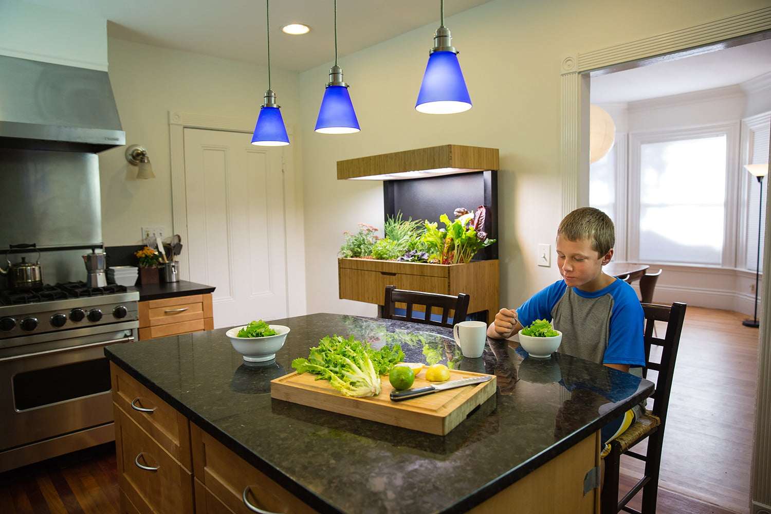 the grove ecosystem launches a kickstarter for its indoor garden a27a4946 edit
