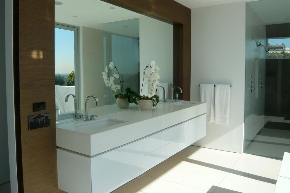 homes with their own shark tanks hollywood hills sharks 19