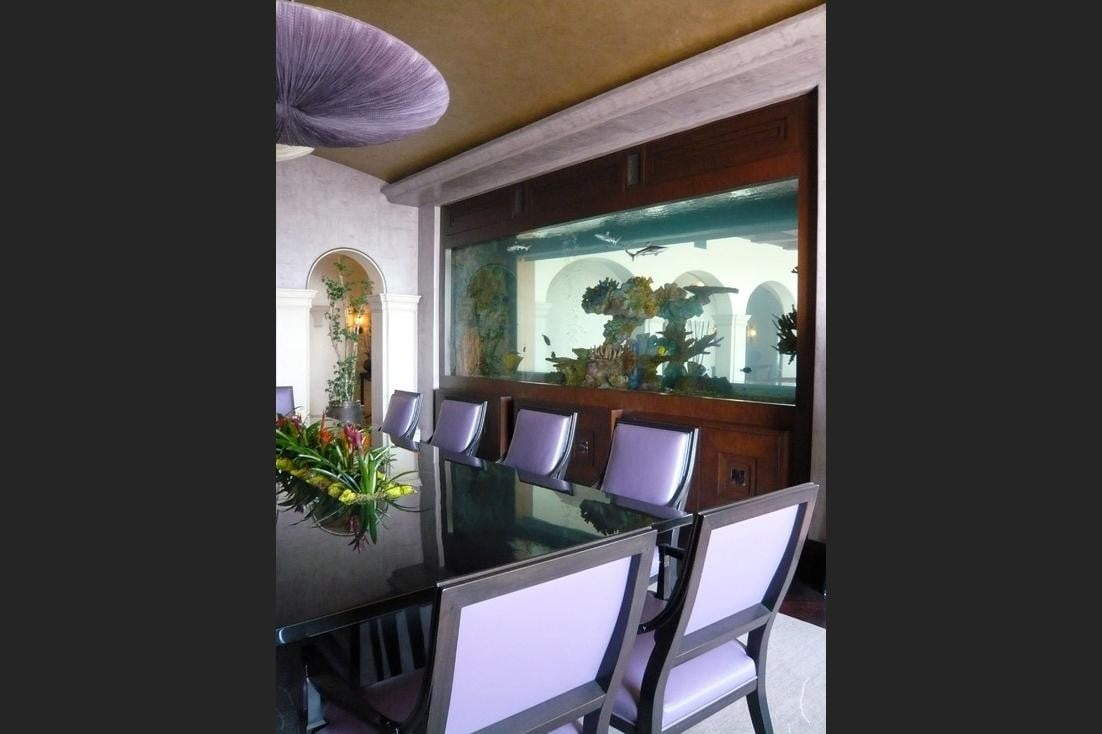 homes with their own shark tanks hollywood hills sharks 2