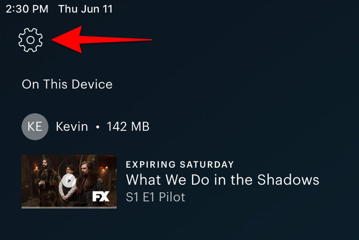 Hulu Content Download settings icon.