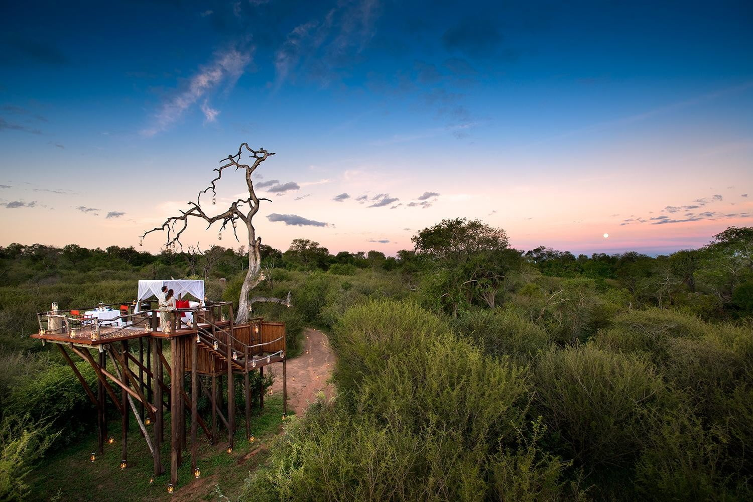 retreat from society and relax in these idyllic cabins around the world lion sands game reserve 1