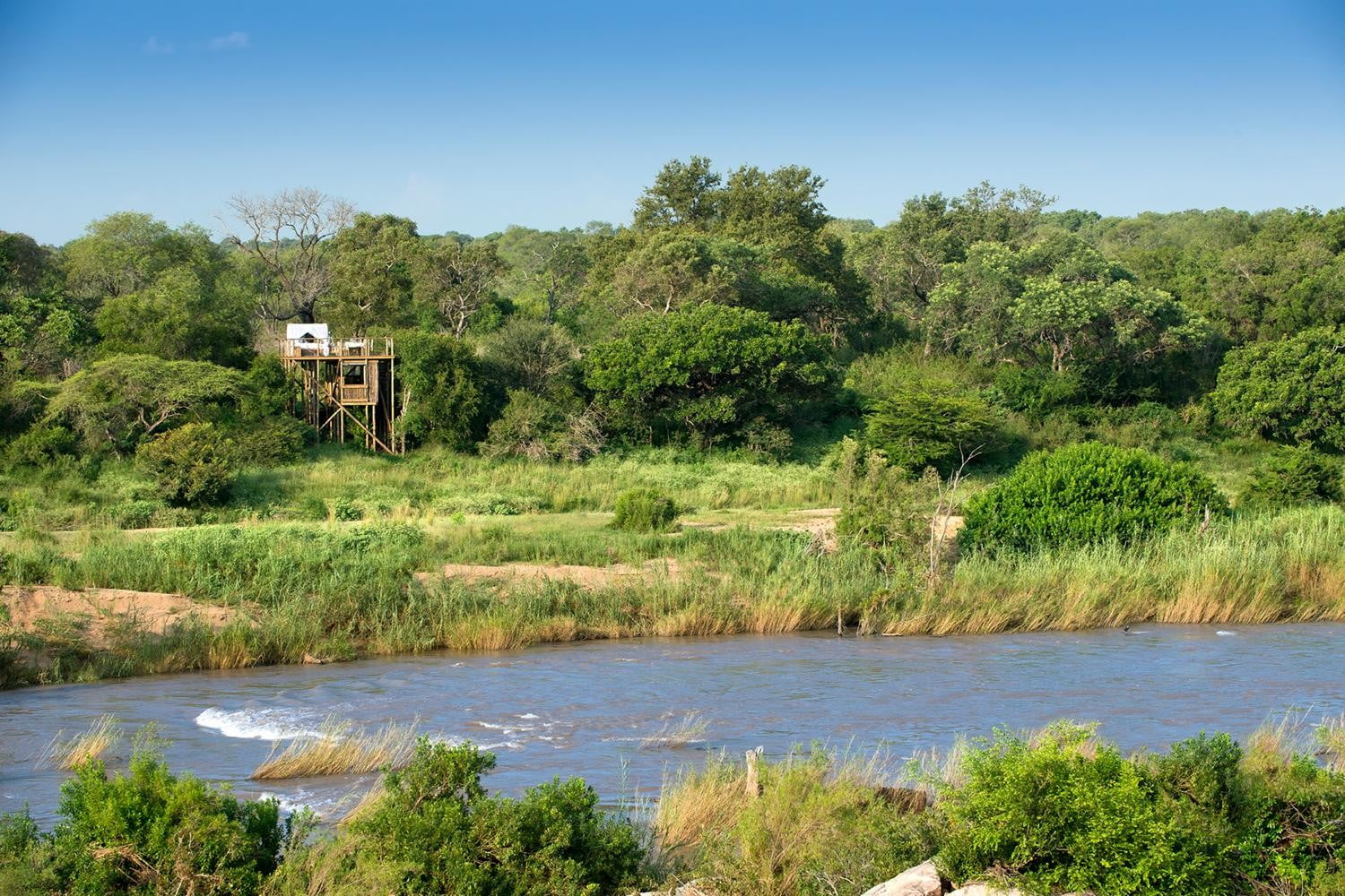 retreat from society and relax in these idyllic cabins around the world lion sands game reserve 9