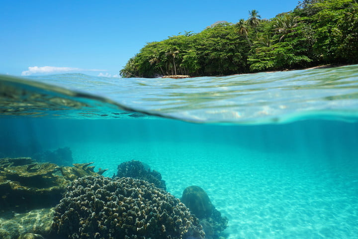 nasa coral reef climate change lush tropical shore and corals underwater
