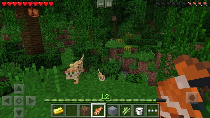 Forest in Minecraft mobile edition.