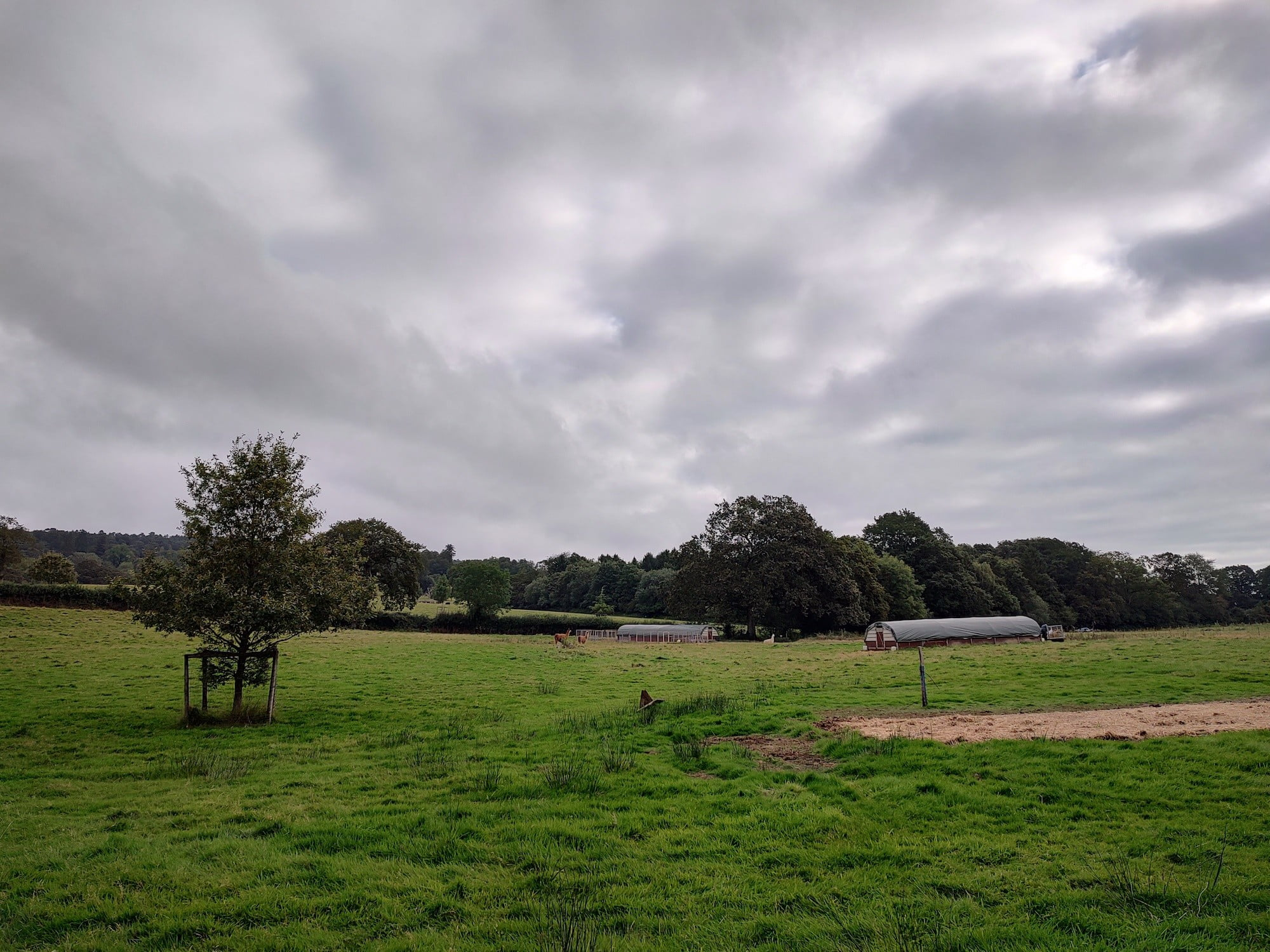 Photo of a farm taken with the main camera on the Moto Edge 20 Pro.