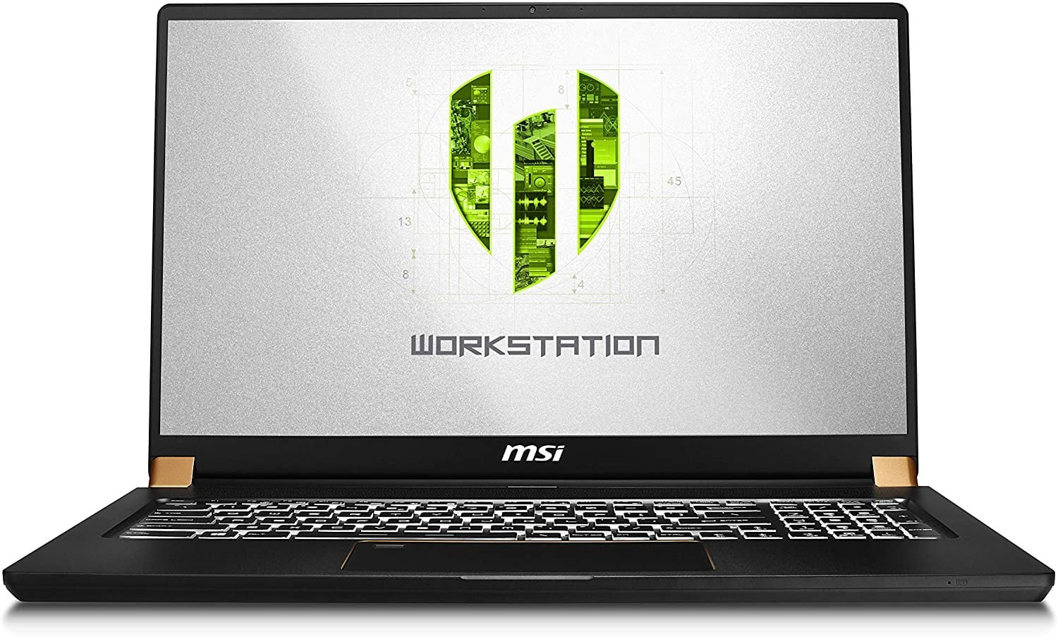 The MSI WS75 9TL-496 open with Workstation logo.