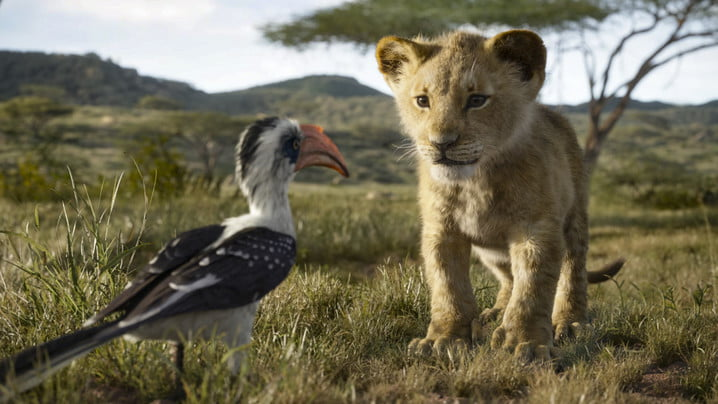 Young Simba and Zazu in the Pride Lands   Lion King VFX
