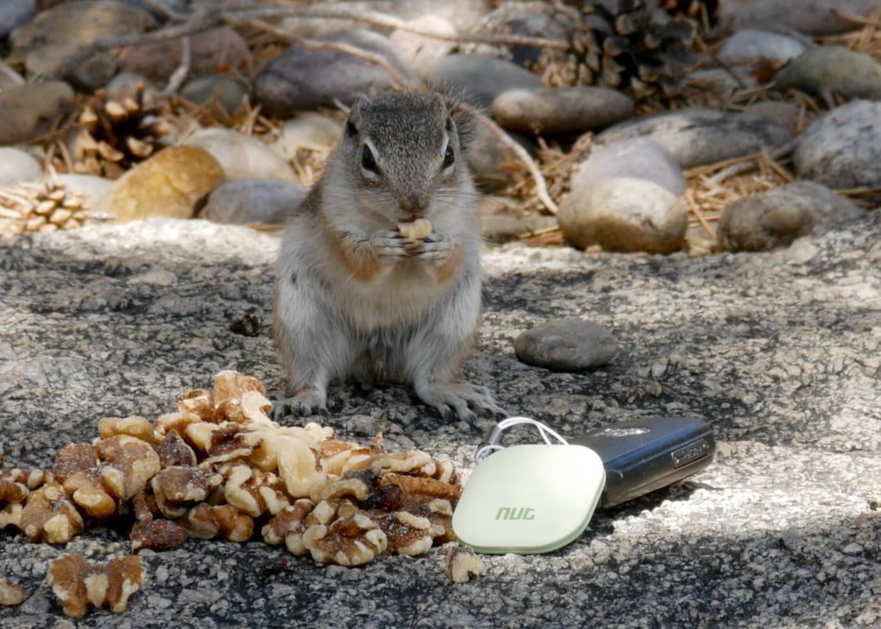 nut find 3 bluetooth item tracker review nut01