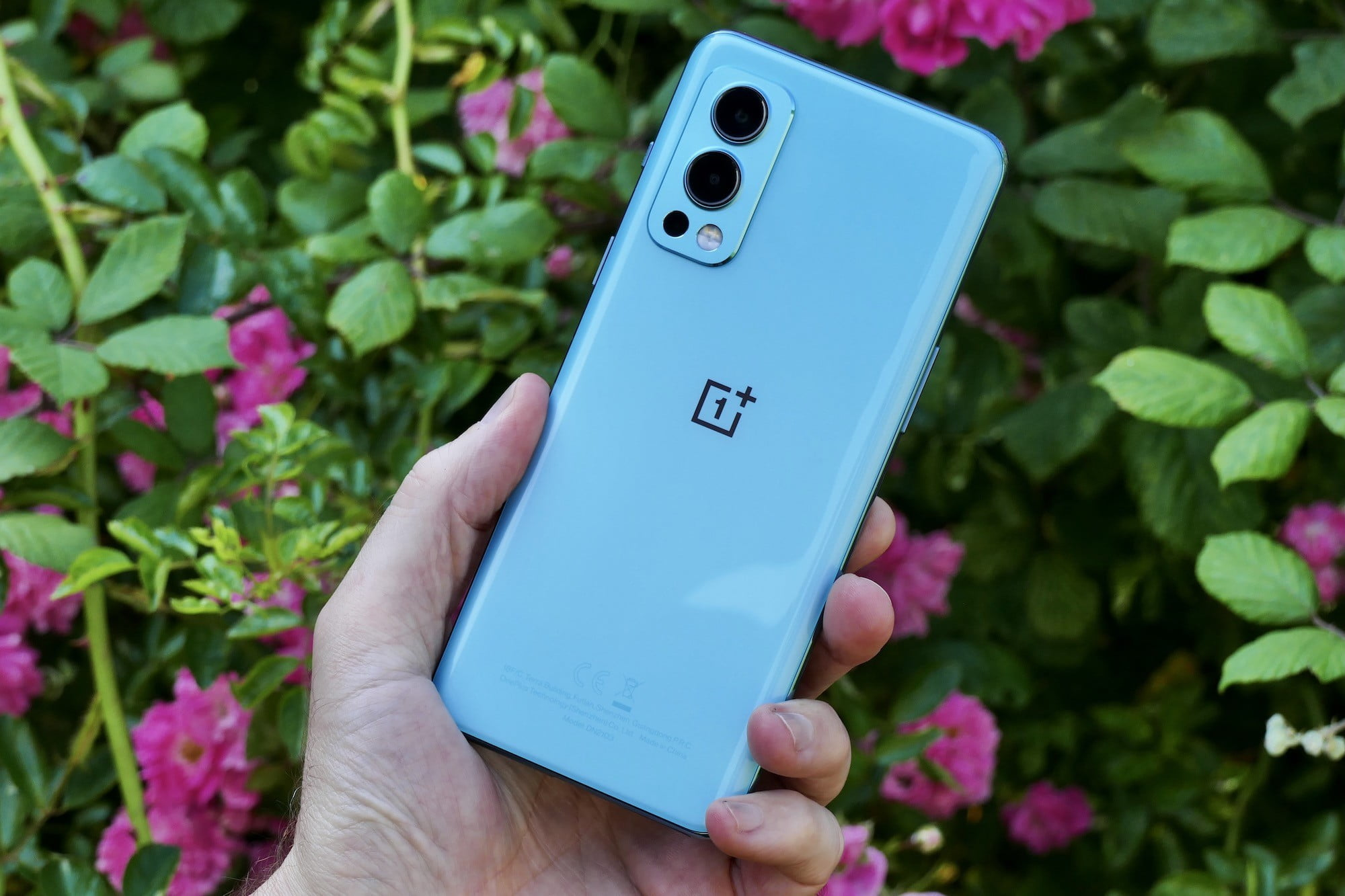OnePlus Nord 2 5G review: Just call it the OnePlus 9 Lite