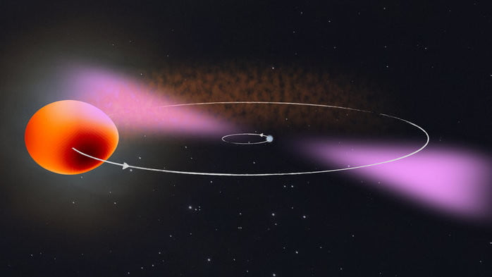 Artist's impression of PSR J2039−5617 and its companion. The binary system consists of a rapidly rotating neutron star (right) and a stellar companion about a sixth of the mass of our Sun (left). The star is deformed by the neutron star's strong tidal forces and it is heated by the neutron stars gamma radiation (magenta). The modelled surface temperature of the star is shown in brown (cooler) to yellow (hotter) color. The radiation from the neutron star slowly but surely evaporates the star and creates clouds of plasma in the binary system, which hamper observation at radio wavelengths.