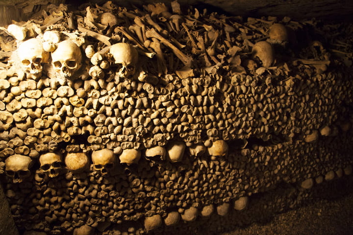 airbnb halloween contest offers a night in worlds largest grave paris catacombs