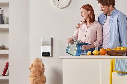 Petcube Bites 2 Lite petcam and treat dispenser can connect you to a vet, too