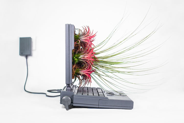 making plant based art is good way to use old macs your mac powerbook